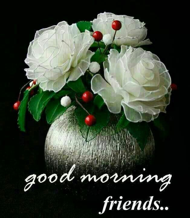 Gud Morning My All Frds