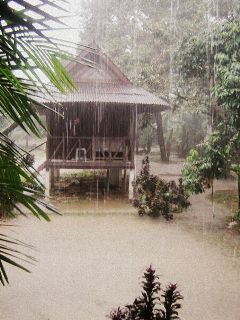 khao sok thailand monsoon summer photography