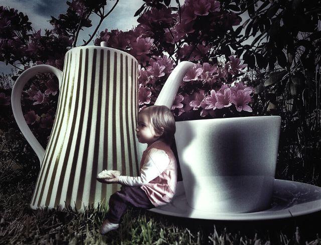 coffee break photography contest winners