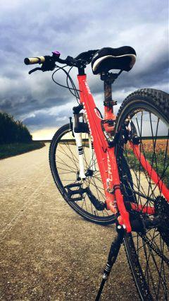 photography travel bike