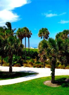 south beach pointe ile promenade