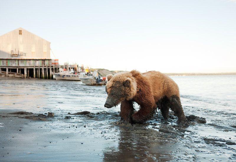 Fisherman Photographer Corey Arnold