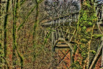 oregon bridge photography colorful freetoedit