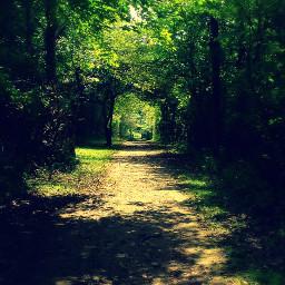 nature walks metroparks peaceful