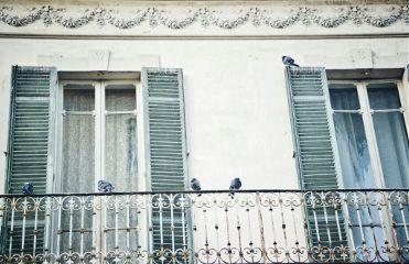 birds architecture windows retro italy