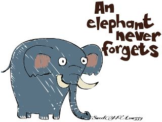 petsandanimals quotesandsayings elephant