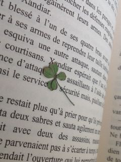 wapgreen luck lucky book fourleafclover